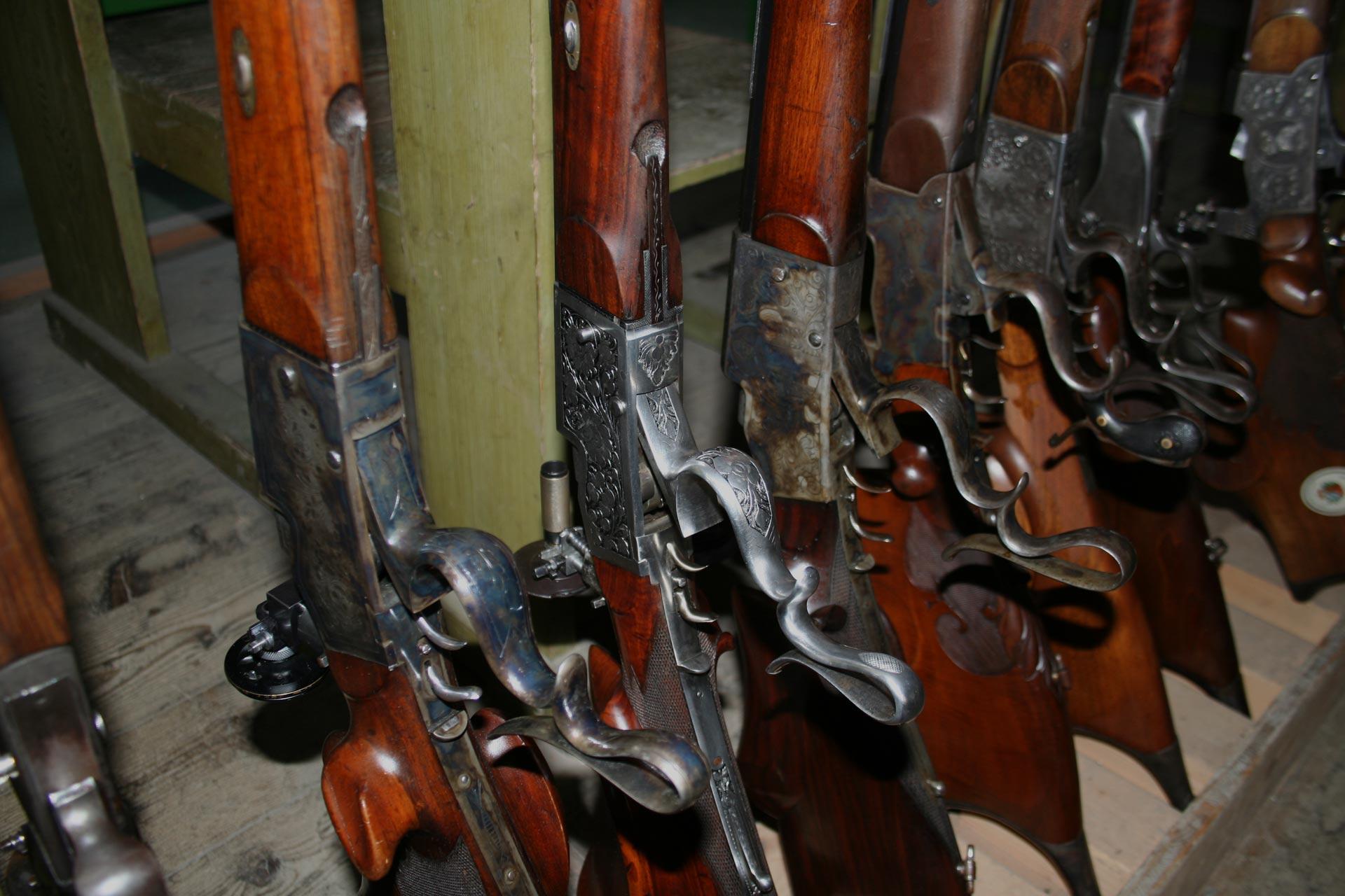 Die besonderen Waffen der<br>Schützengilde Götzis 1834